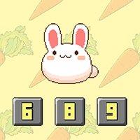 Bunny Math