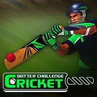 Cricket Batter Challenge